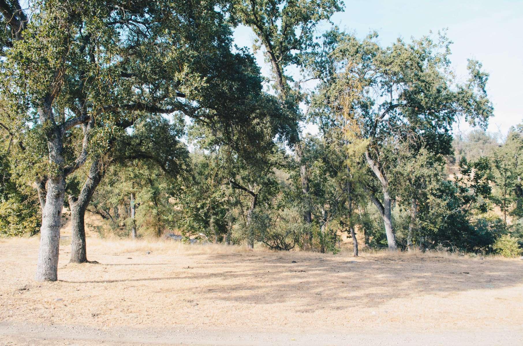 Rustic retreat group campsite serenity rustic retreat ca for Rustic retreat