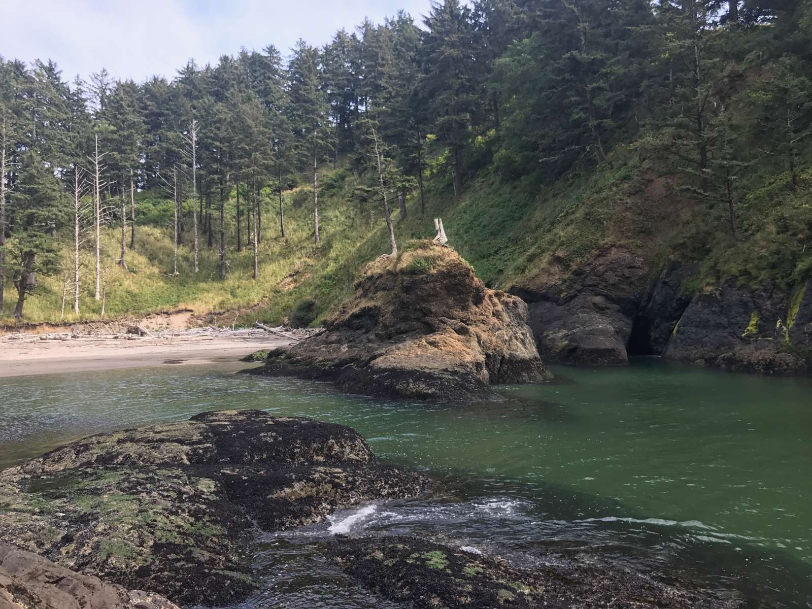 Cape Disappointment State Park Camping