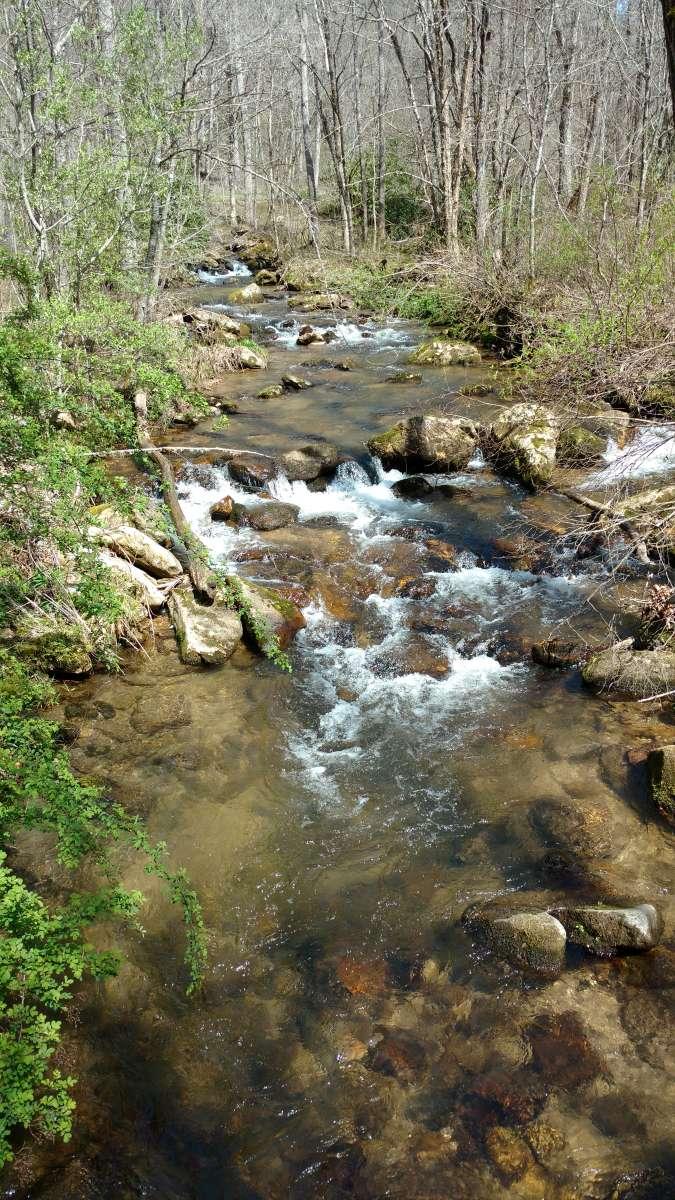 trout creek chat sites Eventbrite - tamparacescom presents xterra trout creek trail runs - 5k / 15k - sunday, march 25, 2018 at trout creek park, thonotosassa, fl find event and registration information.