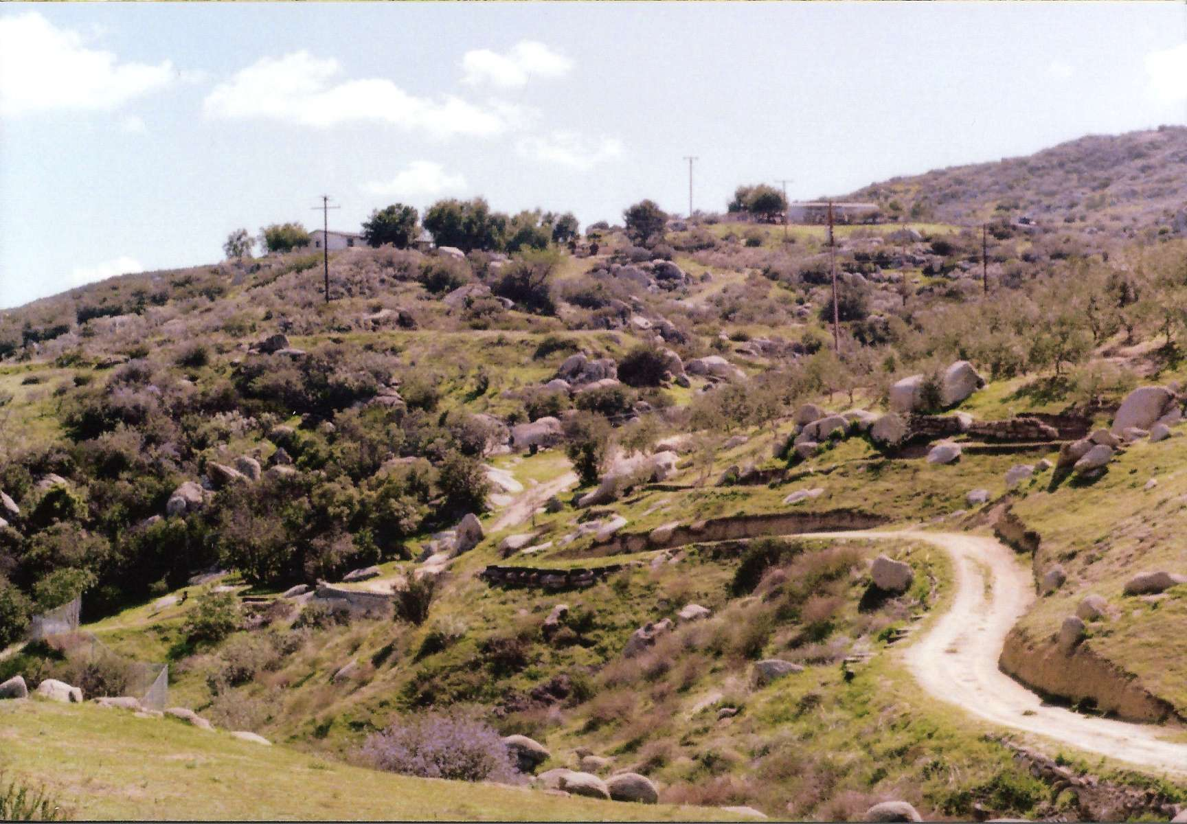 Olive Orchards Tent Camping, Villa Macala, CA: 10 Hipcamper reviews ...
