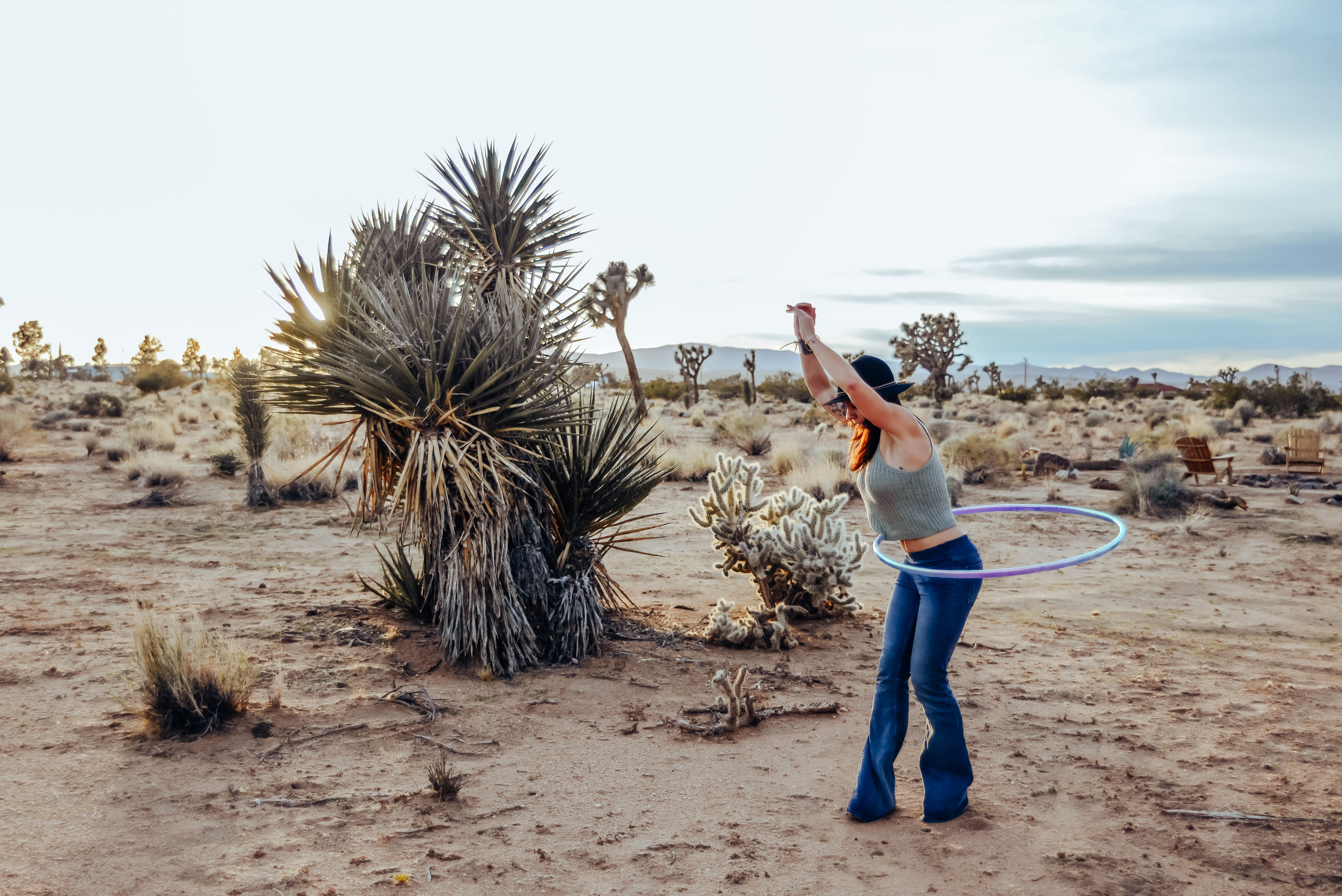 What S The Best Time Of Year To Camp At Joshua Tree Hipcamp Journal Stories For Campers And Our Hosts