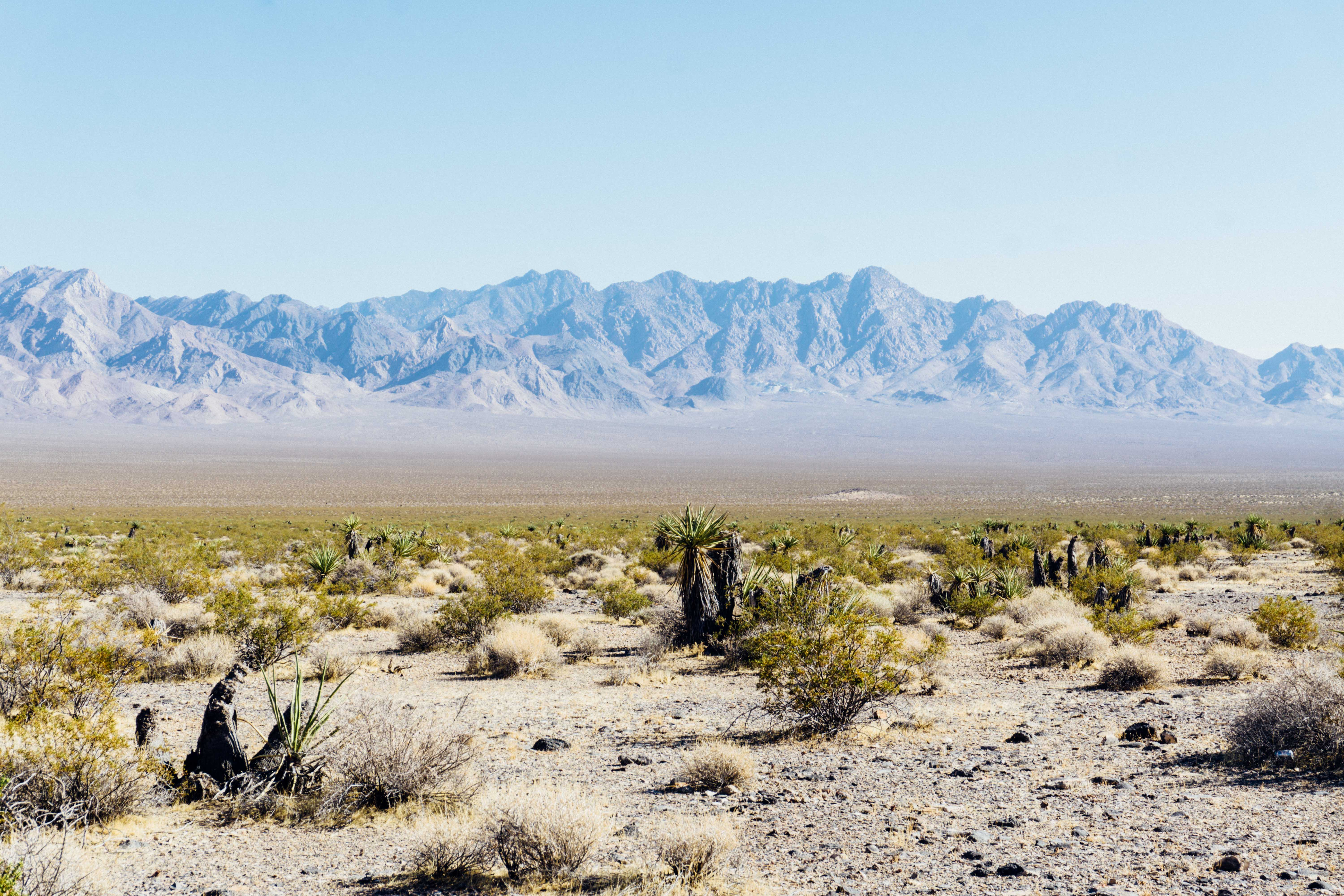 Best Places To Rent Camping Gear In Las Vegas Hipcamp Journal Stories For Campers And Our Hosts