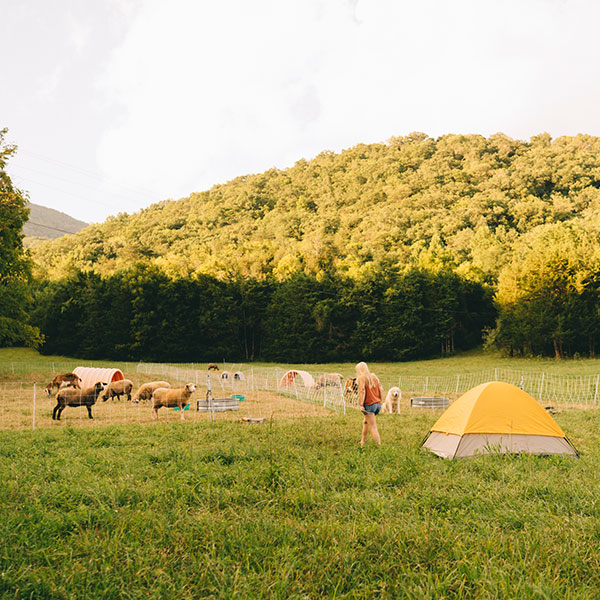 Hipcamp Camping On Private Land Find Yourself Outside