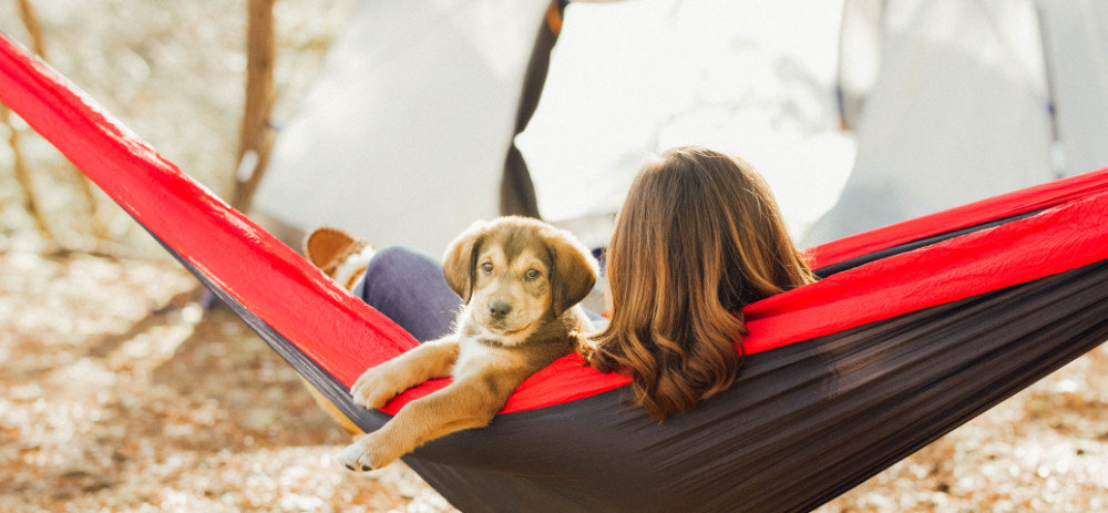 Take Your Pet Camping!