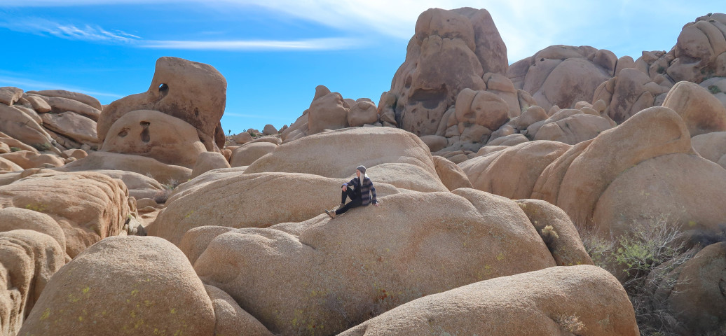 Can You Backpack in Joshua Tree?