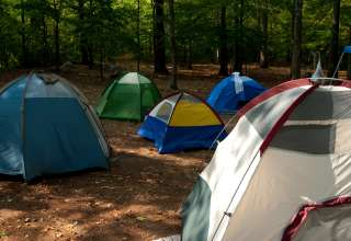 Rickwood Caverns Campground