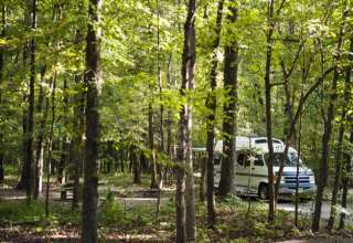 Mammoth Cave Campground is really beautiful.