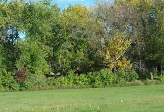 secluded private.guite,plenty of trees for observing nature.plenty of room for walkes