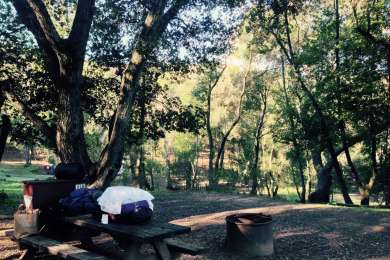 Back Ranch Meadows Campground