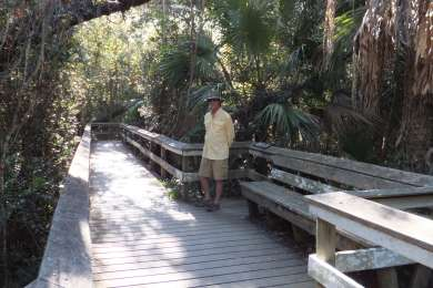 This is the Mahogany Hammock trail just off the main road to Flamingo.