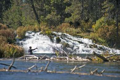 Fall River Falls is a great place for some fly fishing!