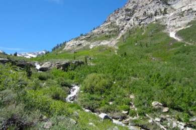 Awesome hiking trail starts in between 2 campsites. Waterfalls, creek, snow-- beautiful!