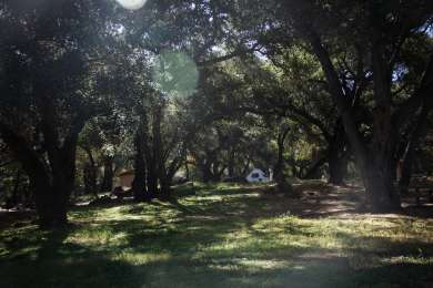 Los Prietos Campground is pleasantly shady and a great site for those newer to camping.