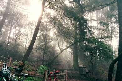 Foggy early morning