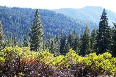 Plumas Eureka State Park
