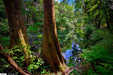 Hillsborough River Campground