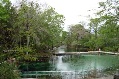 Fanning Springs Primitive Campground