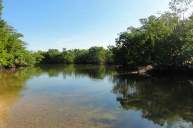 Oleta River Youth Group Campground