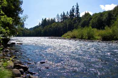 North Santiam Campground