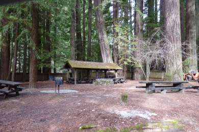 Grizzly Creek Redwoods Campground