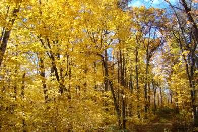 Savanna Portage State Park Campground