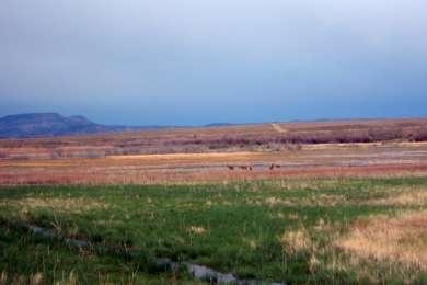 Desolation Gray Canyons Screen Cabins