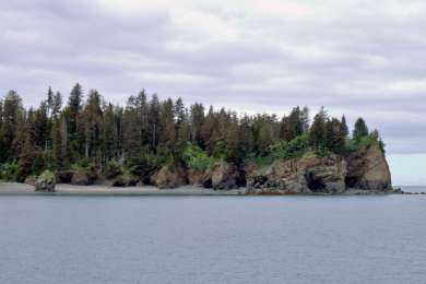 Kachemak Bay Campground
