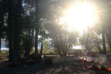 morning by the lake at camp #85