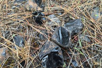 Obsidian littering the ground