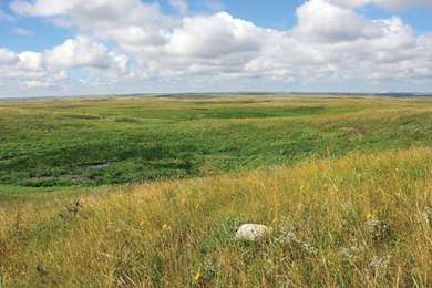 Grand River National Grassland