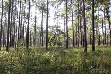 Seminole State Park Campground