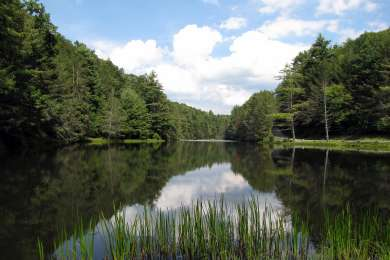 Seneca Campground