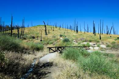 The Azalea Glen loop trail will take you through the forest that was ravaged by the Cedar Fire of 2003.