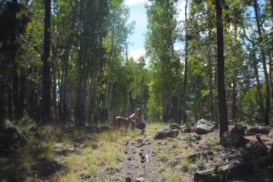 Freidlein Prairie Dispersed Camping