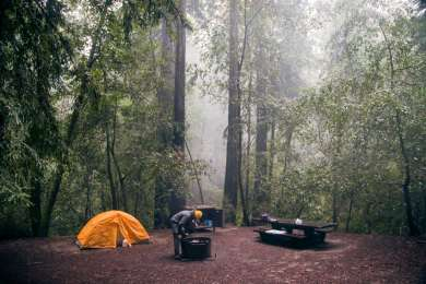 Campsite 60, complete with a picnic table, fire pit, and storage container. The trees were beautiful to look at and protected us from the torrential downpour.