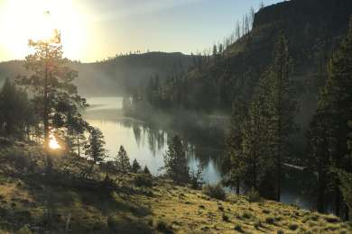 Atop the hill next to Perry South campground, overlooking the Metolius River at dawn.