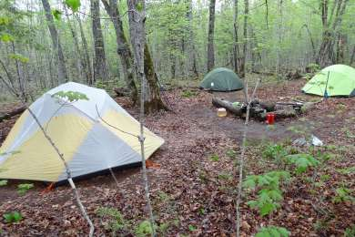 Site 4 with fire ring.  A spacious site with three good tent pad locations.  Logs around the fire ring weren't the greatest, however.