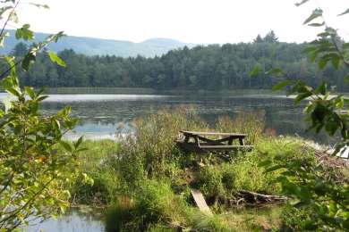 View of Mauserts Pond from the Pond Loop Trail