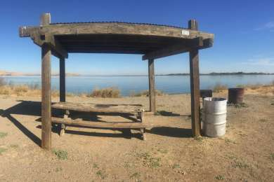 The primitive campsites are just about everything a campsite needs - table, grilll, fire pit, shade, wildlife, conveniently located near the I5 for those trips throughout California as a stopover