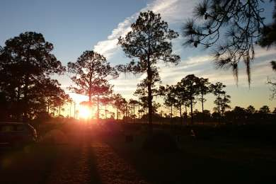 Highlands Hammock Campground