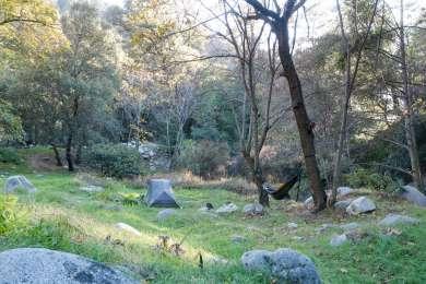 """Hammock-friendly meadow, creek running through the camp."""