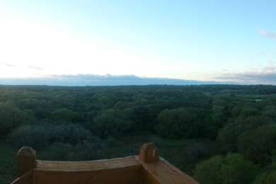 Panoramic from the canopy overlook! Don't miss this!