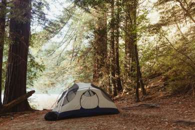 The best campsite among giant Redwoods and close to the river.