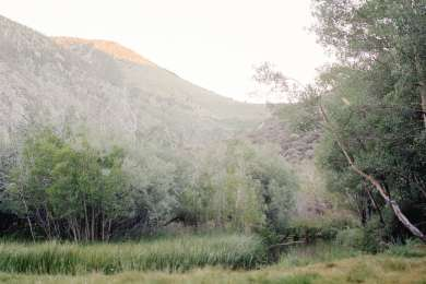 The creek and meadow that runs 20 feet from the campsite.