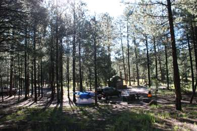Our campsite was very spacious.