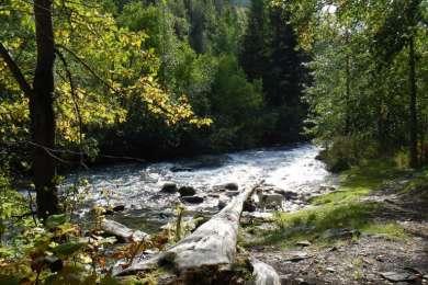 Crescent Creek