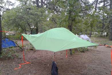 tree tent camping