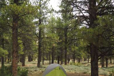 King Creek Campground