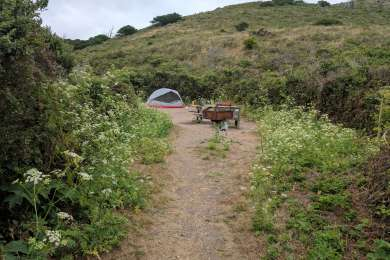 Great place for a beginners backpacking trip. We stayed at campsite #6. It was very secluded and quiet. You can walk from the coast camp sites on a short trail to the beach. Huge Beach with beautiful sand and not too many people around.