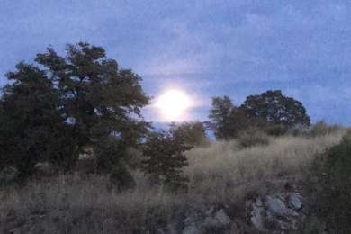 Horrible photo, but I forgot to take more. This was the supermoon rising over the campground. The sunrises were just ad stunning.